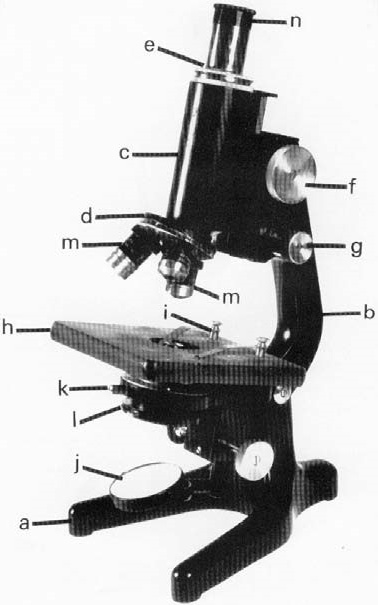 Basic microscope