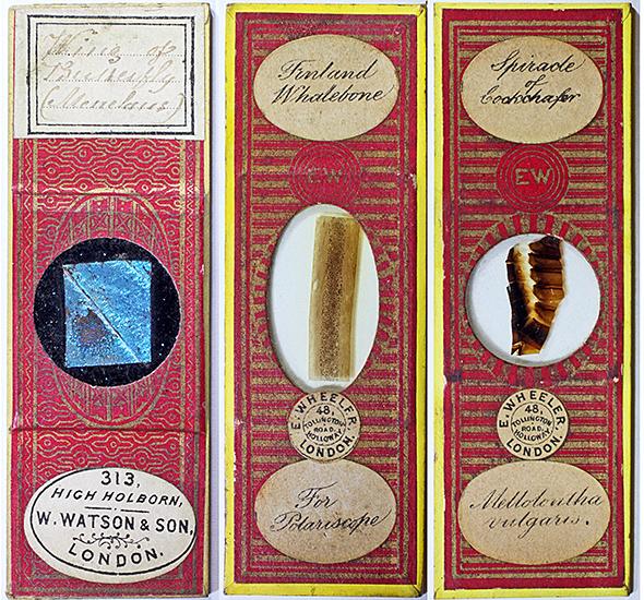 Antique slides