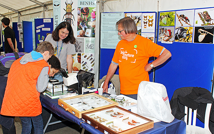 British Entomological and Natural History Society stand