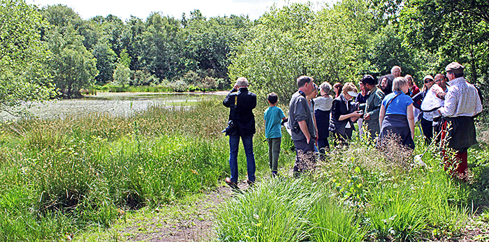 Bluegate pond