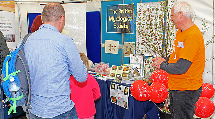 British Mycological Society stand