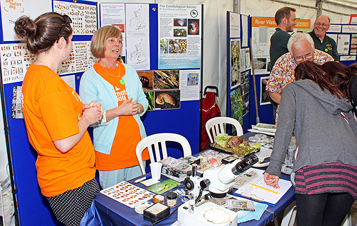 Conchological Society stand