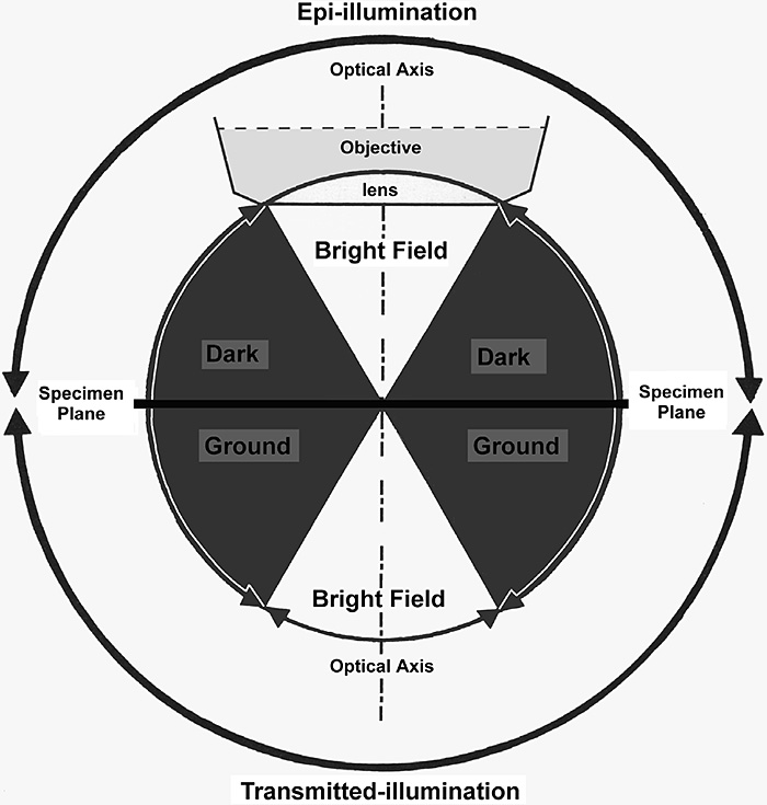 Contrast theory diagram