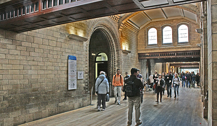 Corridor to the Darwin Centre