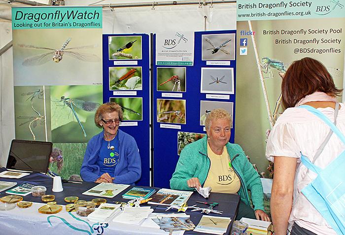 British Dragonfly Society stand