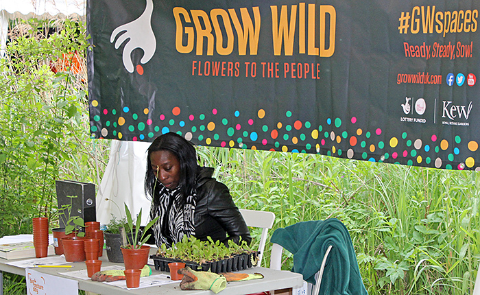 Grow Wild stand