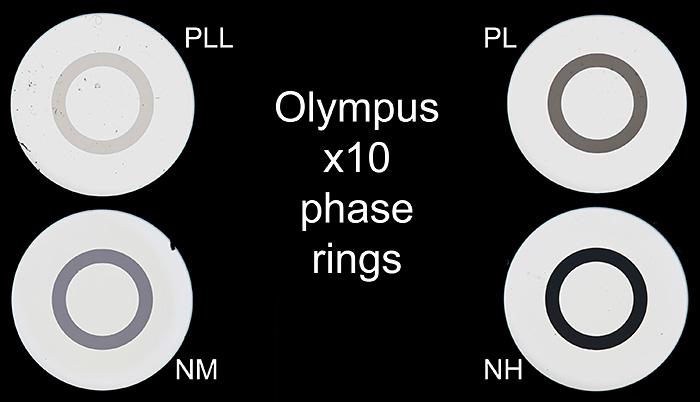 Olympus phase rings