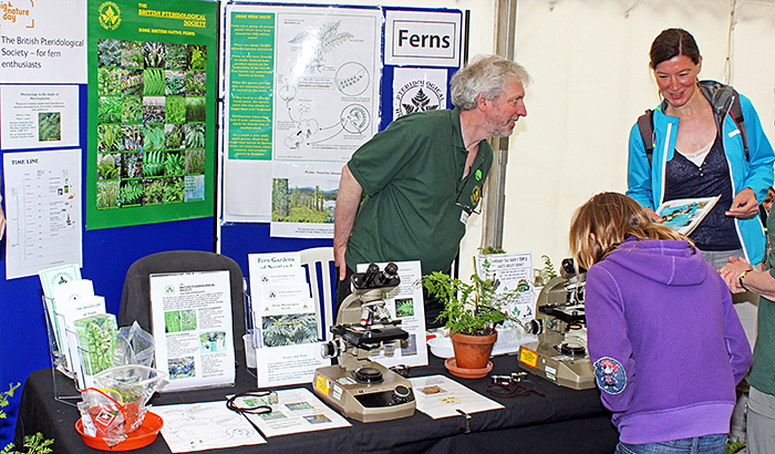 Pteridological Society stand