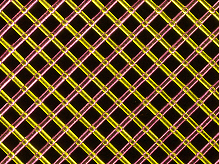 Polyester mesh under Rheinberg illumination