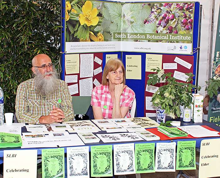 South London Botanical Institute stand