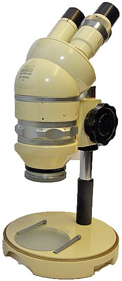 Older stereomicrosope