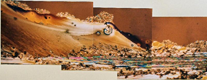 Wave of Urea