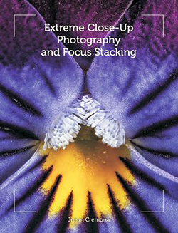 Extreme close-up photography and focus stacking, by Julian Cremona