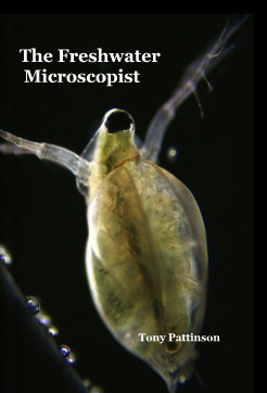 The freshwater microscopist, by Tony Pattinson