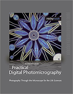 Practical Digital Photomicrography: Matsumoto