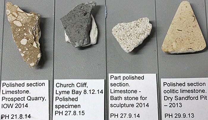 Sections of rock that have been polished so that crystals and fossils can be observed with a stereomicroscope