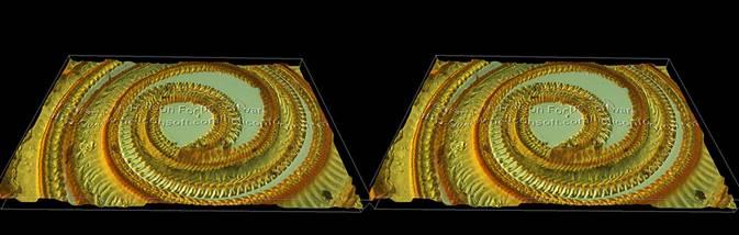 Butterfly proboscis (cross-eyed stereogram)