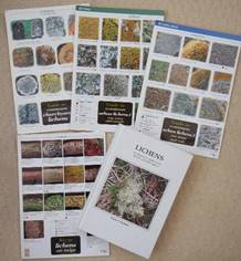 Lichen identification aids