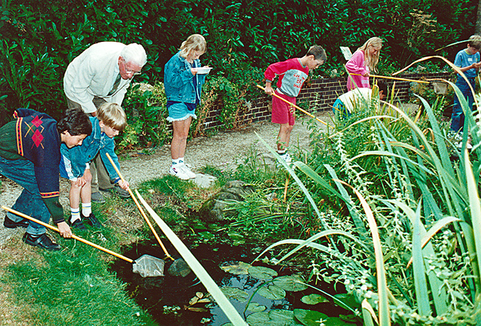 Pond dipping with children, 1995 St Albans