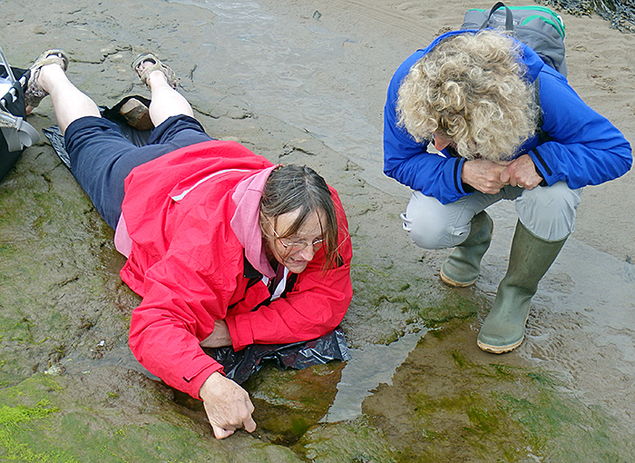 Jacky McPherson surveying a rock pool