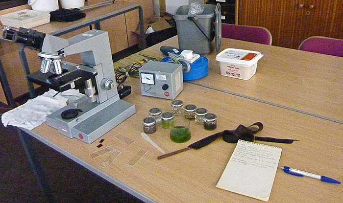 Leitz compound microscope and some specimens