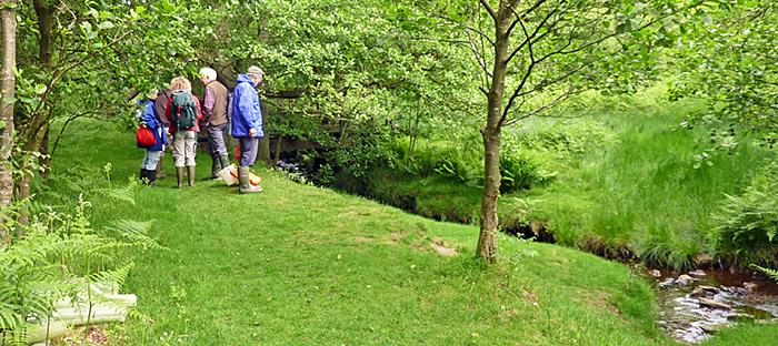 Members near a stream