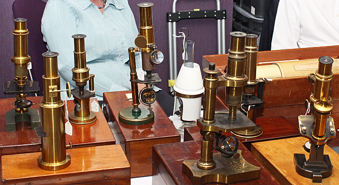 Several brass microscopes