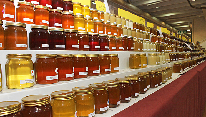 Long rows of jars of honey