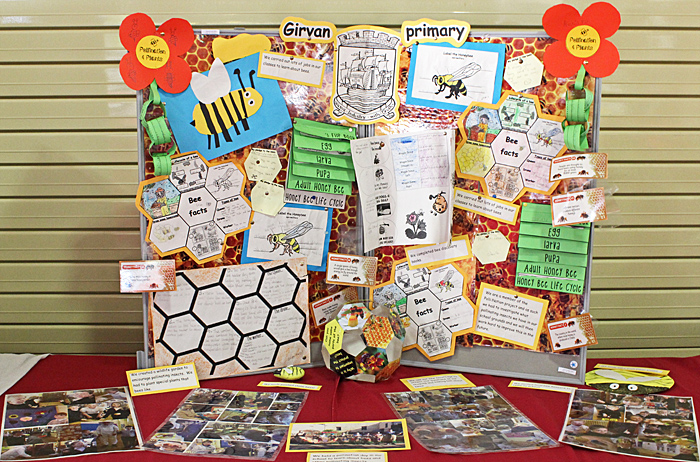 Girvan School display