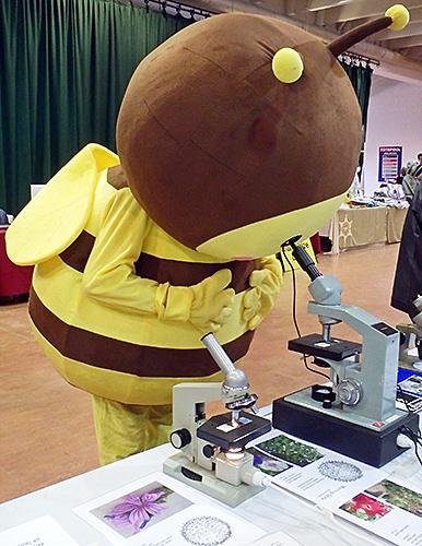 Show mascot identifying pollen