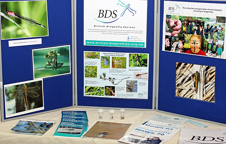 British Dragonfly Society stand