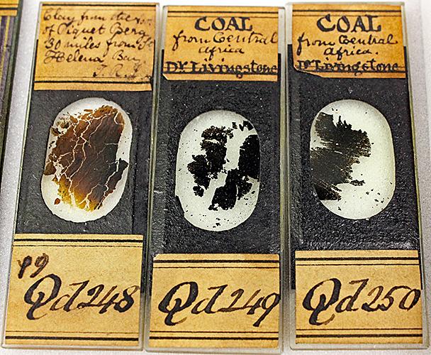 Slides of coal