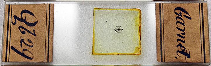 Slide of garnet