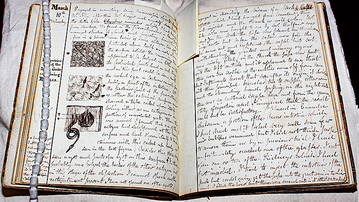 One of John Thomas Quekett's notebooks