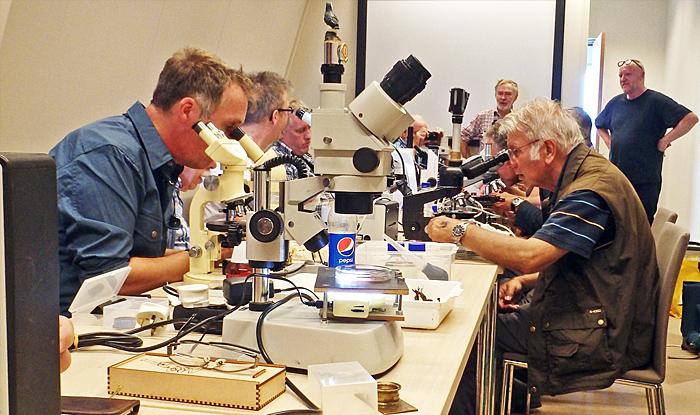 Examining specimens