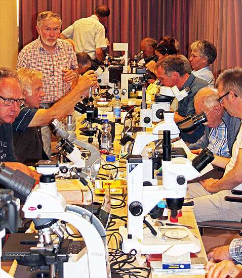 Members and their microscopes