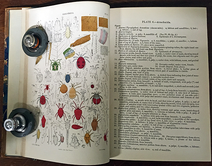 Micrographic Dictionary