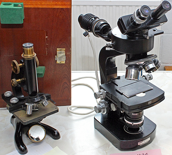 CTS M1000 and a Wild M20 epi-illumination microscope