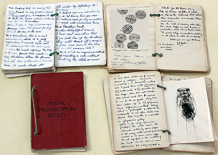 PMS notebooks with entries by E. D. Evens