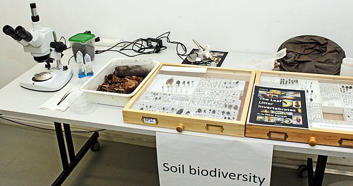 Soil biodiversity exhibit