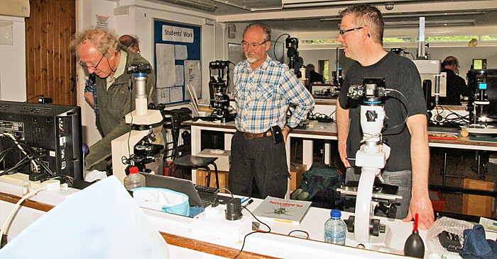 Grenham Ireland, John Tolliday and Wim van Egmond