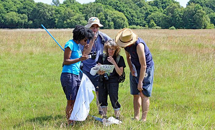 Alison Pelikan identifying a specimen