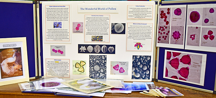 Pollen display