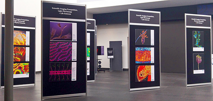 Imaging Competition