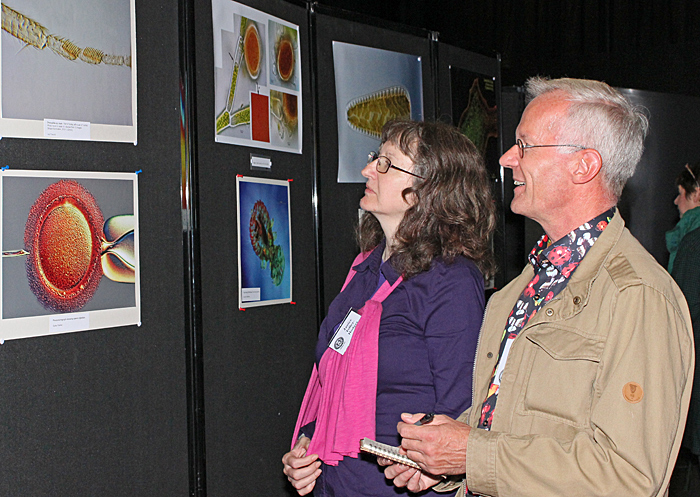 Janice Tolley-Hodges and Tim Newton judging the photographs