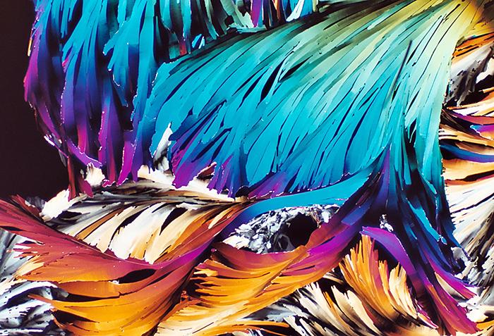 Hexadecane crystals (crossed polarisers), by John Rowland