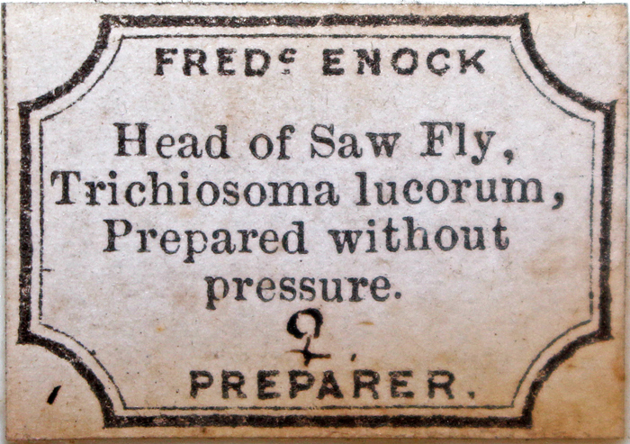 Enock slide label