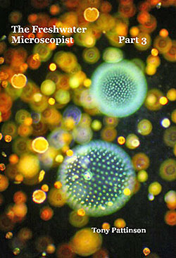 The Freshwater Microscopist Part 3 by Tony Pattinson