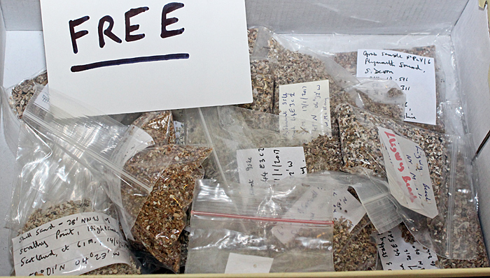 Free bags of sand and shells