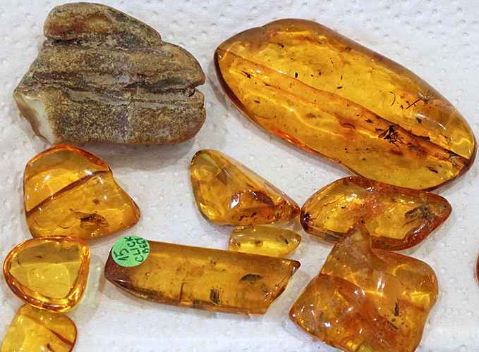 Raw and polished amber